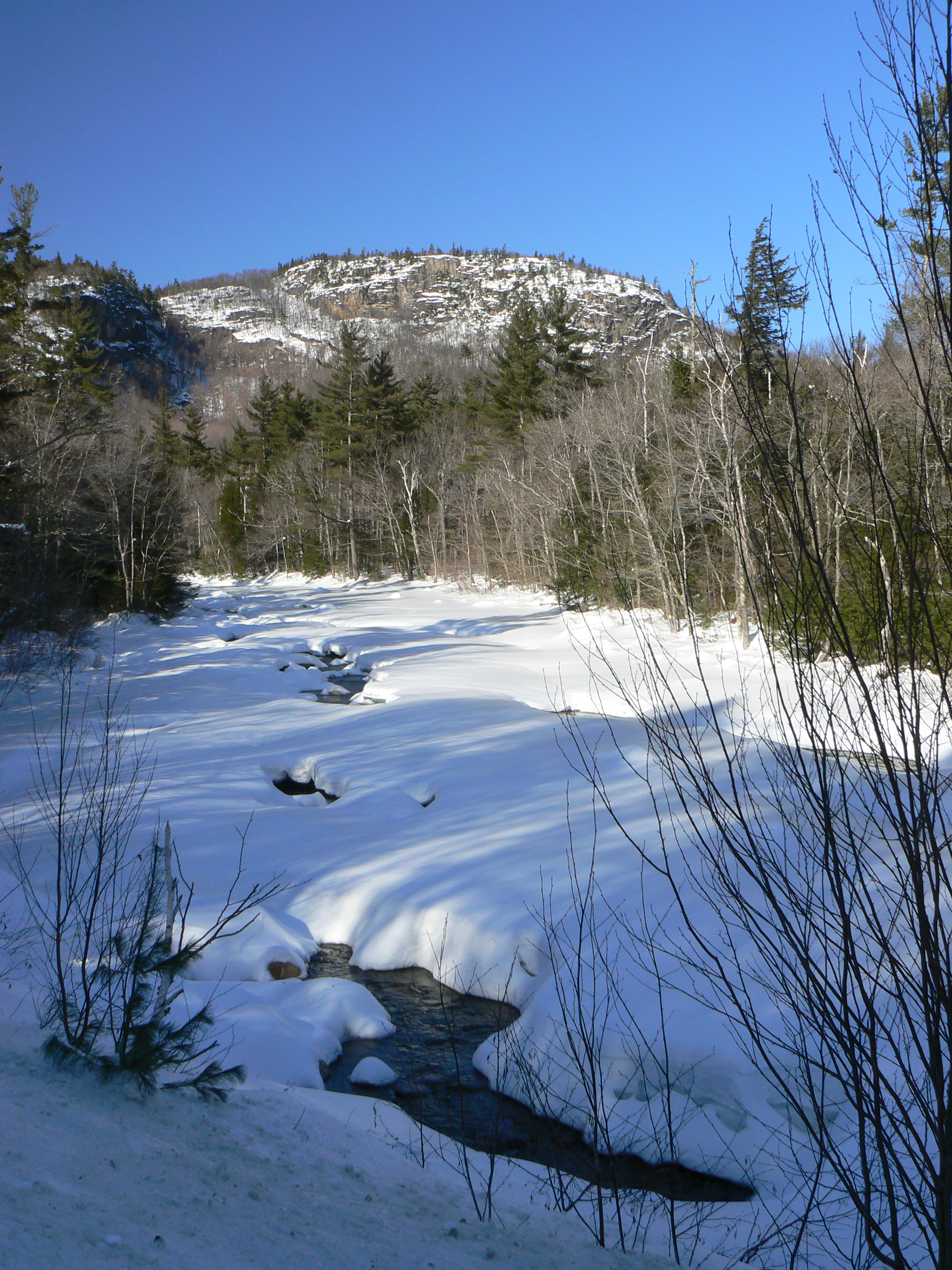 Swift River, 3/1/2011